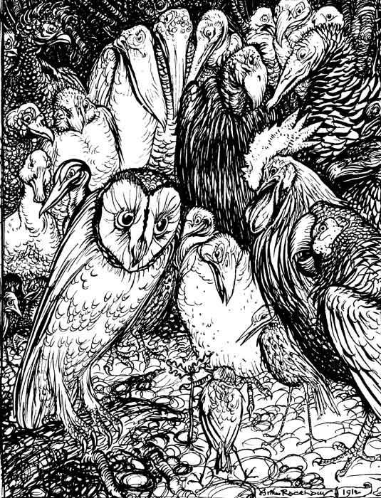La chouette et les oiseaux, Arthur Rackham. http://data.abuledu.org/URI/517d3ba1